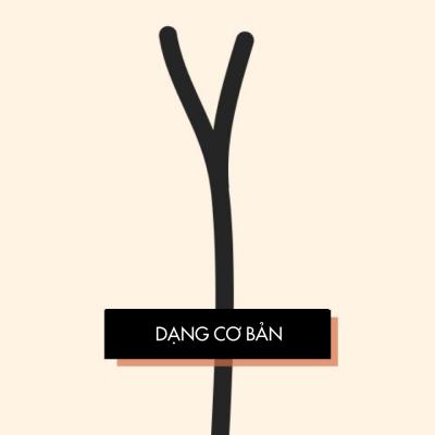 cac-dang-toc-che-ngon-1
