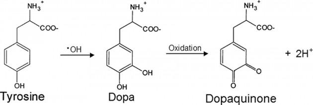 dan-xuat-vitamin-c-moi-hieu-qua-than-thanh-ban-phai-thu-ngay-8