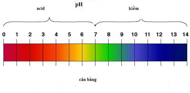 Nen-lam-gi-neu-sua-rua-mat-co-do-pH-qua-cao-1